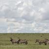 1804_Tanzania1_809