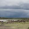1804_Tanzania4_997