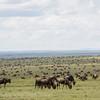 1804_Tanzania1_652