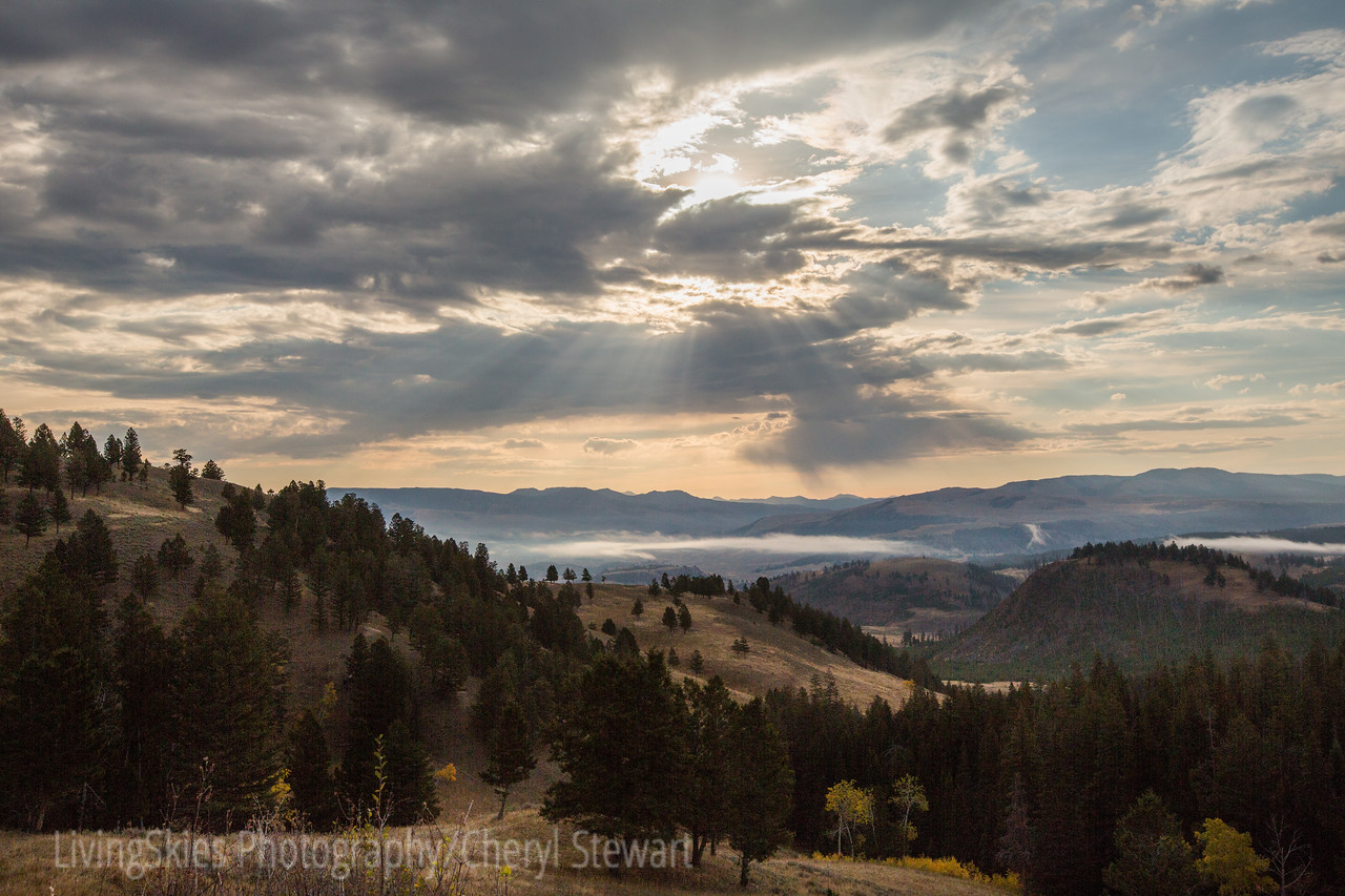 Sun rays through the clouds, fog in the valley   YNP