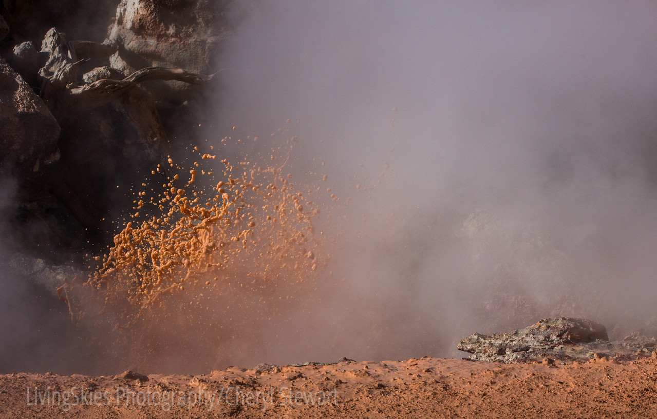 Boiling Red Mud, Fountain Paint Pots,  YNP