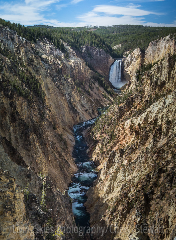Lower Falls on the Yellowstone from Artists Point   YNP