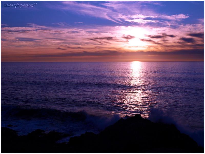 Bodega Bay Headlands