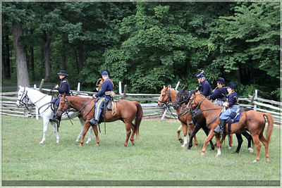 A group of soldiers rode through the park.