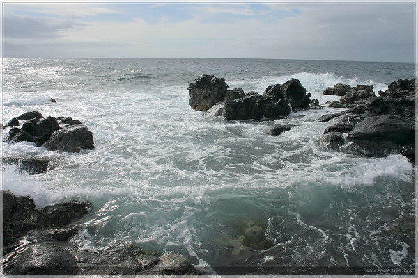 This picture was taken while standing out at the end of the rocks. The water was clear here except for the foam from the waves.