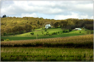 A house on a very green hillside across the way from the wetland.