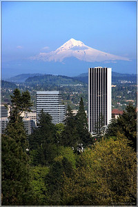 At the Japanese Gardens, there was a wonderful overlook for the city. It provided a great view of Mt. Hood in the distance.  The mountain looked surreal.  Almost like an artificial photographer's backdrop for a portrait.  It was hard to believe what I was seeing.
