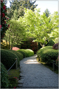 The next few shots are from the Japanese Gardens.  If you're ever in Portland, this is a beautiful place to visit.