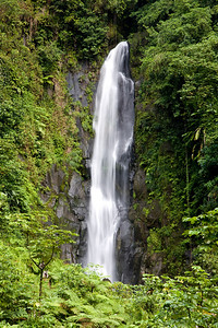 Dominica: Trafalgar Waterfall