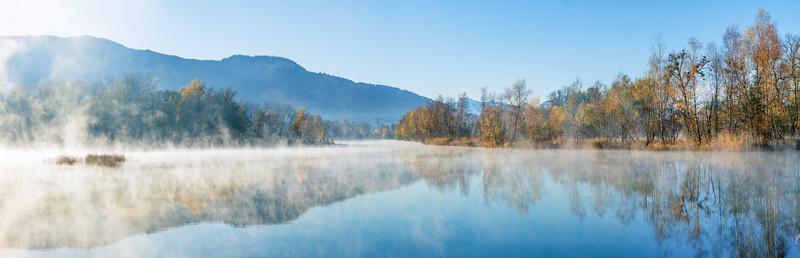 Herbstnebel am Alten Rhein