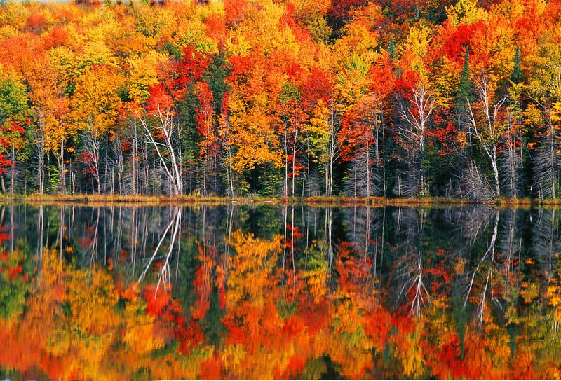 Redjack lake, Michigan