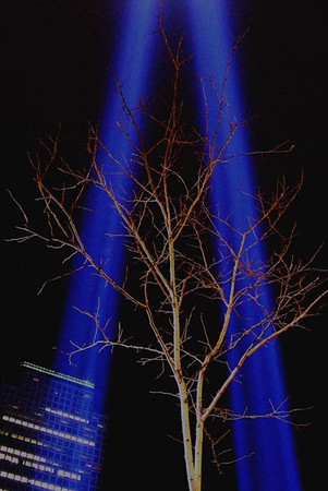 To commemorate the six-month anniversary of the World Trade Center terrorist attack, the Tribute of Light was erected adjacent to Ground Zero.  Two shafts of light similar in shape and position to the two World Trade Center towers are beamed into the night sky.