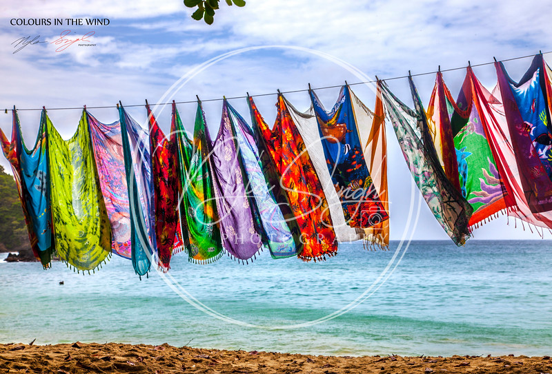 Colours in the Wind (Englishman's Bay)