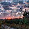 Winter sunrise on Lake Tsala Apopka.