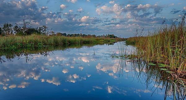 Lake Tsala Apopka, west central Florida