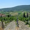 Tuscany Italy Winery 3
