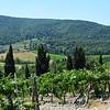 Tuscany Winery in Italy 8