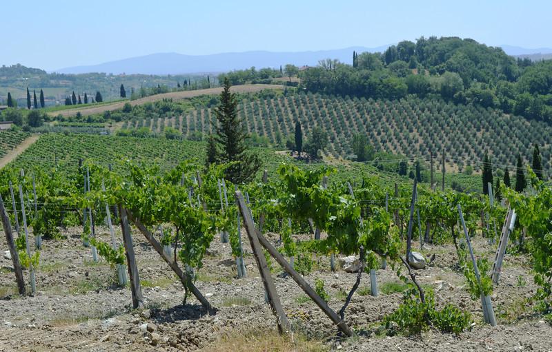 Tuscany Italy Winery