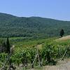 Tuscany Italy Winery 13