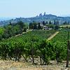 Tuscany Winery in italy 2