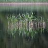 Loch Pityoullish