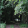 Path to the Pond <br /> ©2008 FlorieGray