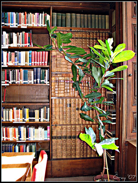 Secret Passage <br /> Can you locate the door to the secret passage in the library?