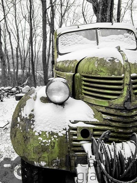 Snowy Dodge