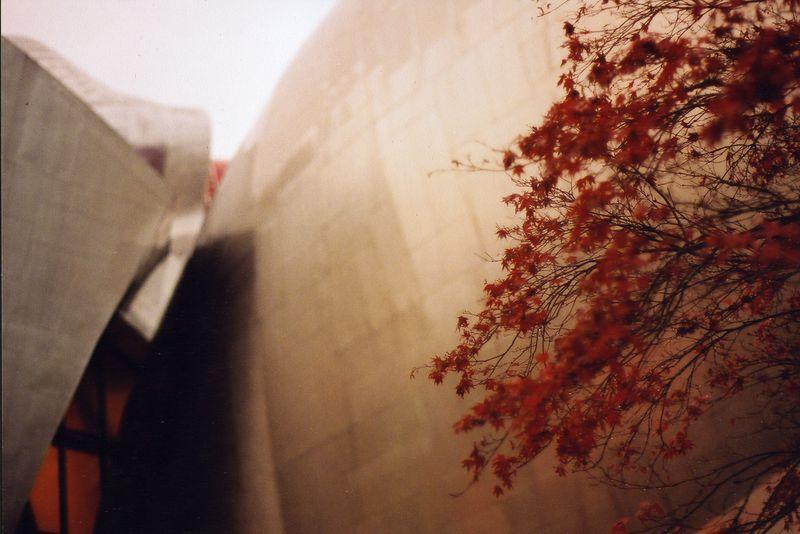 Seattle November 2003