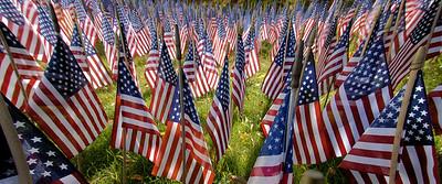 USA.FLAGS2