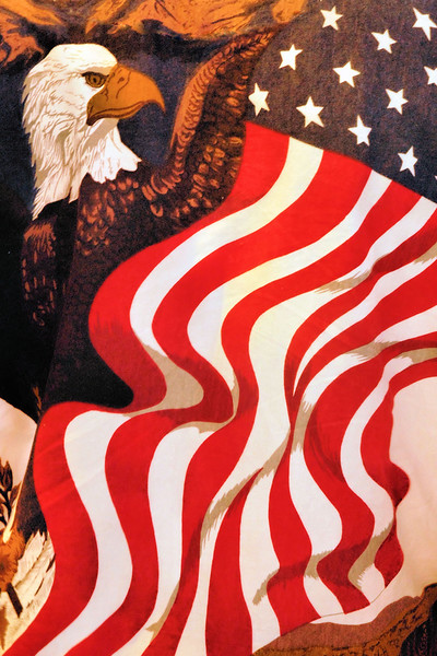 USA.FLAGS46