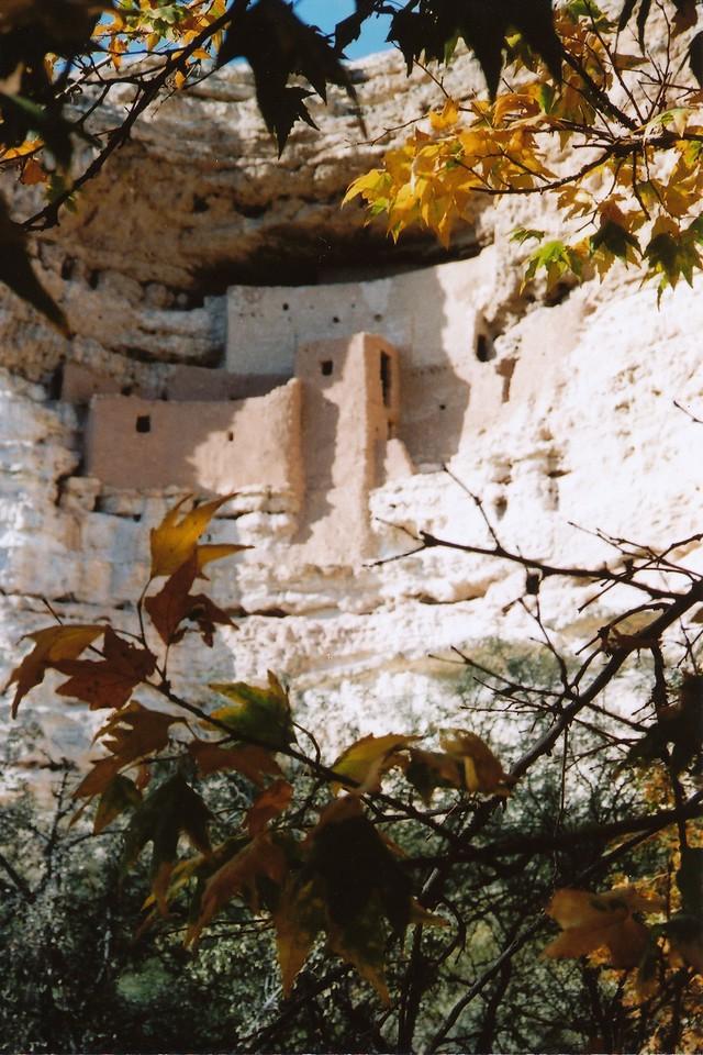 Arizona   October 2008