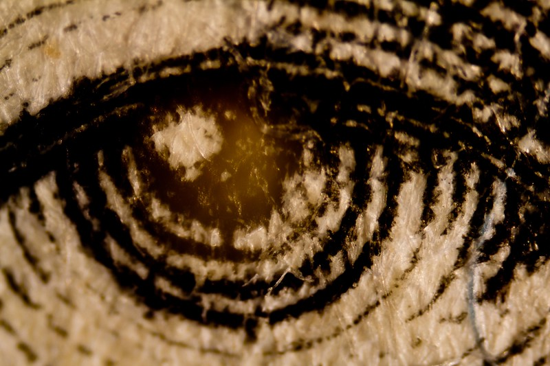 Abe Lincoln's eye.<br /> Photo © Carl Clark