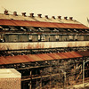 <h2>Only Yesterday</h2> - By Vivienne Gucwa  Old, decayed and abandoned warehouse: urban decay at its finest. At the Brooklyn Navy Yard in New York City.