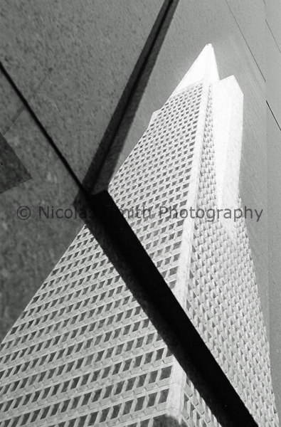 Pyramid Reflected, 2003;   This reflection of the Pyramid is on a building across the street in downtown San Francisco.  *All images and gift items print without the watermark*