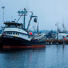 Some interesting scenes from fishermans terminal in Seattle