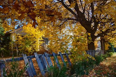 Utah in the Fall
