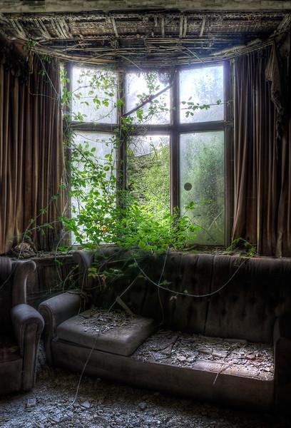 Manor-IVY-Window