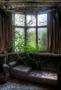 Manor-IVY-Window