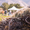 The Caine College of the Arts hosts renowned artist Patrick Doughtery for a sculpture installation on Utah State University's campus on Sept. 4, 2018.