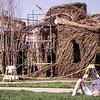 A Utah State University student studies in front of Patrick Dougherty and his team of volunteers working on an art installation on Utah State's campus in September 2018. The installation is installed in front of the Merrill-Cazier library, a heavily trafficked area for students. (Megan Nielsen)