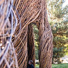 Kids play in the willow sculpture at a dedication and naming ceremony of an art installation on Utah State University's campus, on September 21, 2018. The sculpture was named A Restless Spell. Patrick Dougherty, a world renowned artist, began working on the installation on September 3. Craig Jessop, Dean of Caine College of the Arts, said it's been his dream to have one of Dougherty's installations here since he started at Utah State and it's exciting to see that dream finally come true. (Megan Nielsen)