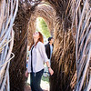 People wander through the willow sculpture at a dedication and naming ceremony of an art installation on Utah State University's campus, on September 21, 2018. The sculpture was named A Restless Spell. Patrick Dougherty, a world renowned artist, began working on the installation on September 3. Craig Jessop, Dean of Caine College of the Arts, said it's been his dream to have one of Dougherty's installations here since he started at Utah State and it's exciting to see that dream finally come true. (Megan Nielsen)