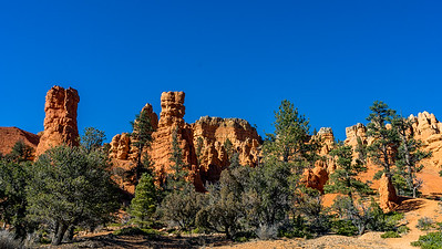 Red Rock Canyon _DSC1309