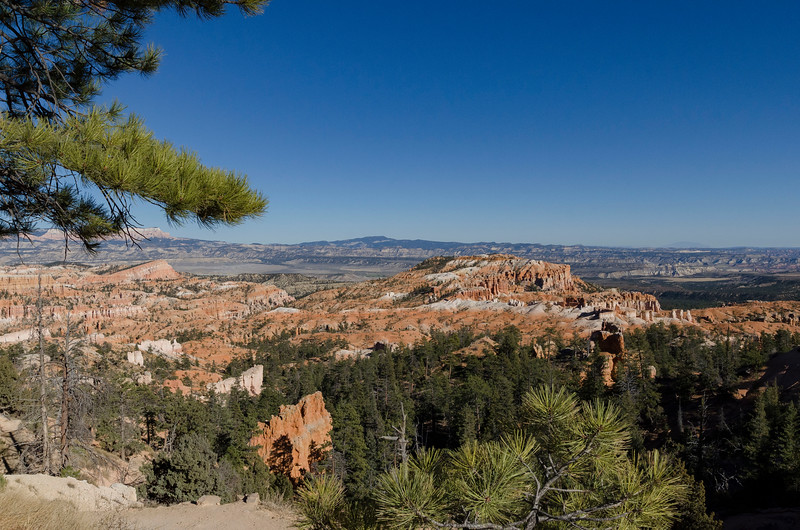Bryce Canyon Vista
