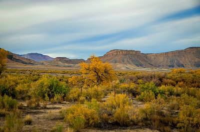 Utah 2016-19