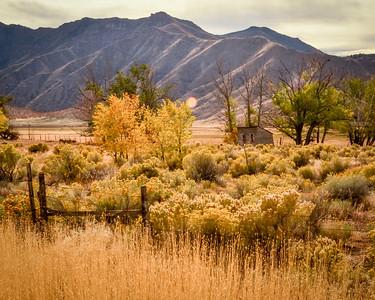 Utah 2016-5