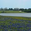 The L-Ranch, TX
