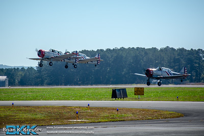 Wings Over North Georgia 2014