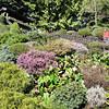 Butchard Gardens Victoria 6